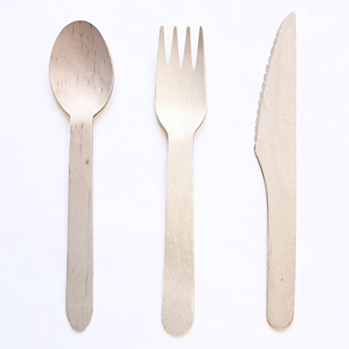 Biodegradable Wooden Tea Spoons 100 x Birch Wood Quality Item