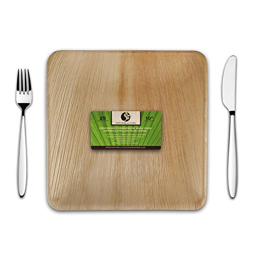 Disposable Eco Palm Paper Plates Square Compostable Biodegradable Heavy Duty Dinner Party Plate u2013 Comparable to Bamboo Wood Fiber u2013 Nice Elegant Looking ...  sc 1 st  Compostable & Disposable Eco Palm Paper Plates: Square Compostable Biodegradable ...