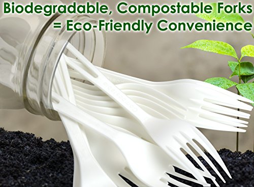 Eco-Friendly Cutlery with No Wood Taste Safe for Hot and Cold Foods! Biodegradable Spoons Made from Non-GMO Plant-Based Plastic 25 Pack Disposable Sturdy Utensils are Certified Compostable