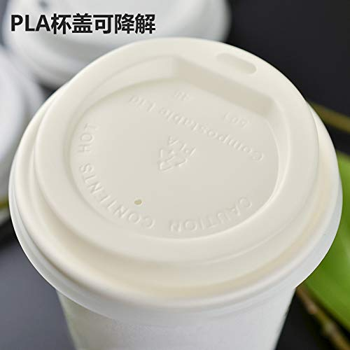 100/% Compostable Eco-friendly 12 Oz PLA Lined Hot Paper Cups Coffee With Lids